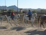 Women's Horseriding